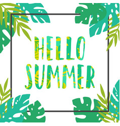 Hello summer tropical leaves frame vector