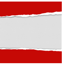 red ripped paper vector image
