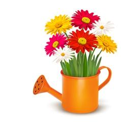 Colorful fresh spring flowers in orange watering vector image