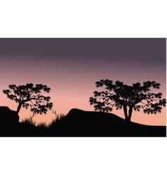 Tree in hill scenery silhouette vector image