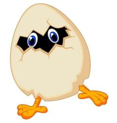 Little chicken cartoon in egg vector image