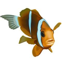 Striped Ocean Fish vector image