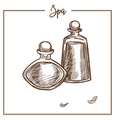 bottles full of oils for spa procedure monochrome vector image