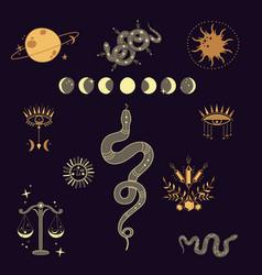 Celestial mystical vector