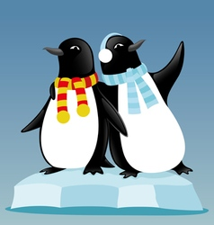 Cute penguins on an ice floe vector image
