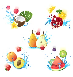 fruits in splashes vector image vector image