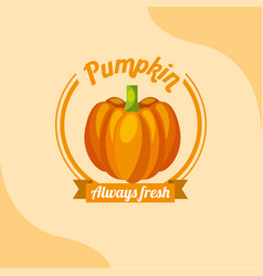 vegetable pumpkin always fresh emblem vector image