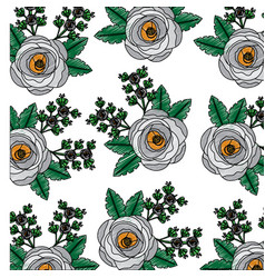 poppy flowers bud botanical decoration pattern vector image