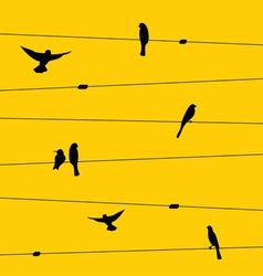 Birds and wires vector