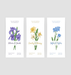 collection gorgeous vertical wedding invitation vector image