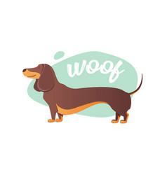 happy dog dachshund the style flat vector image