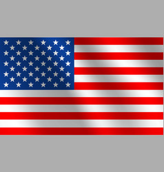 usa national flag vector image
