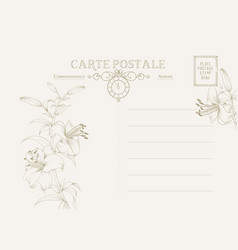 vintage postcard background template vector image