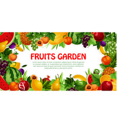 fruit and berry frame with leaf poster design vector image