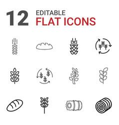 12 barley icons vector image