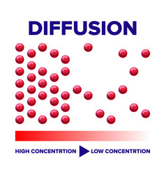 diffusion physics process info poster vector image