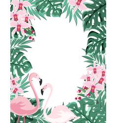 flamingo floral frame vector image