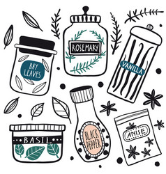 herbs and spices jars icon set vector image