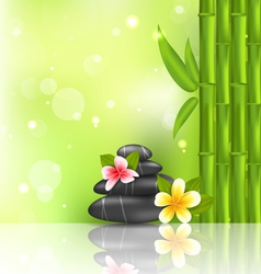Meditative oriental background with frangipani vector image