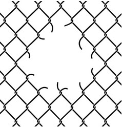 Mesh netting torn rabitz with hole mesh fence vector