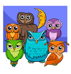 owls group cartoon animal characters vector image