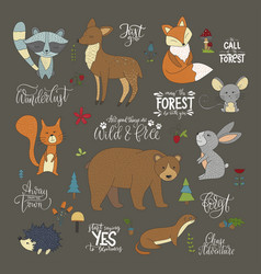 set of hannddrawn cute forest animals vector image