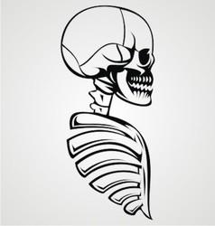 Skull Draw vector image