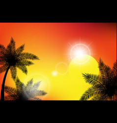 summer tropical backgrounds with palms sky and vector image