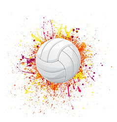 volleyball color grunge symbol vector image