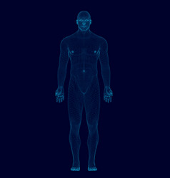 Wireframe model man of blue lines on a dark vector