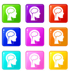 head with brain icons 9 set vector image vector image