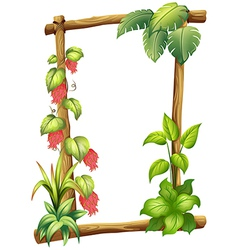 A frame made of wood with vine plants vector image vector image