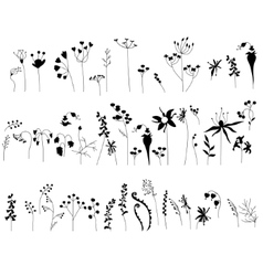 Collection with stylized forest flowers and herbs vector image vector image