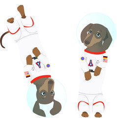 Astronaut dog vector