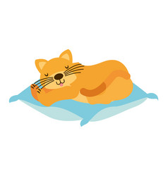 domestic cat sleeping on the cushion vector image