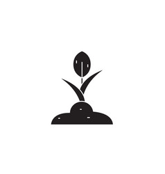 growing plant black concept icon growing vector image