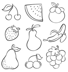 Hand draw fruit various style doodles vector