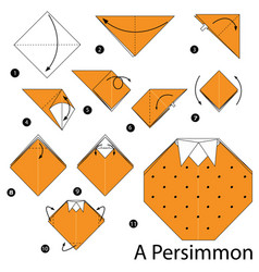 Instructions how to make origami a persimmon vector