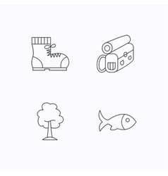 Maple tree fish and hiking boots vector image