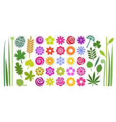 set colorful summer flowers leaves and stems vector image