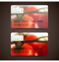 Set of gift cards with blurred background of red vector image