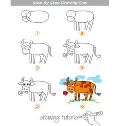 Step by step drawing cow vector