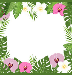 tropical leaves and flowers orchid summer frame vector image