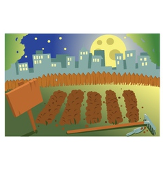 Vegetable garden by night vector image