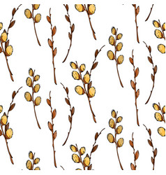 watercolor pussy-willow seamless pattern vector image