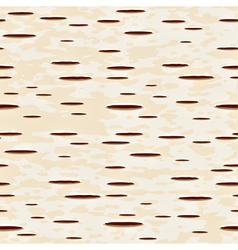 birch pattern vector image