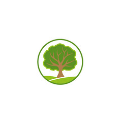 a leafy tree on a green plateau twigs logo vector image