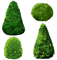 Collection bushes and cypress vector
