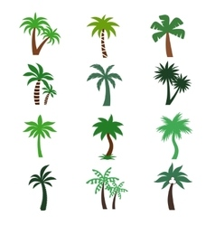 Color palm trees silhouettes vector
