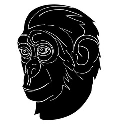 monkey avatar vector image vector image